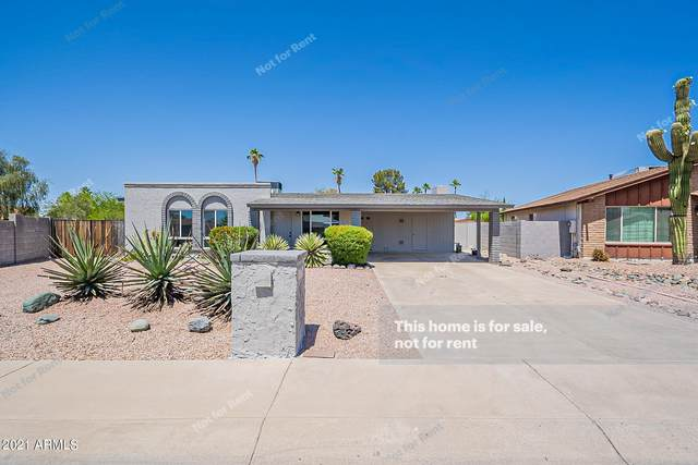 1556 W Escuda Road, Phoenix, AZ 85027 (MLS #6234650) :: Yost Realty Group at RE/MAX Casa Grande