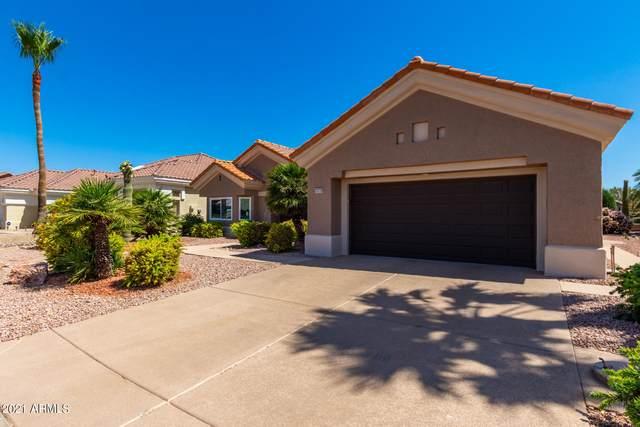 14310 W Las Brizas Lane, Sun City West, AZ 85375 (MLS #6234651) :: The Luna Team
