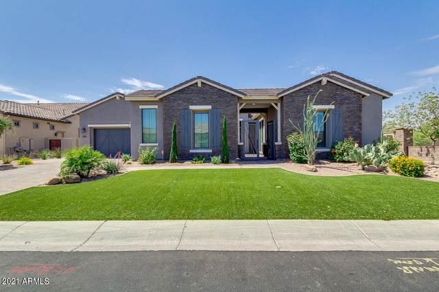 2507 E Vallejo Drive, Gilbert, AZ 85298 (MLS #6234726) :: Conway Real Estate