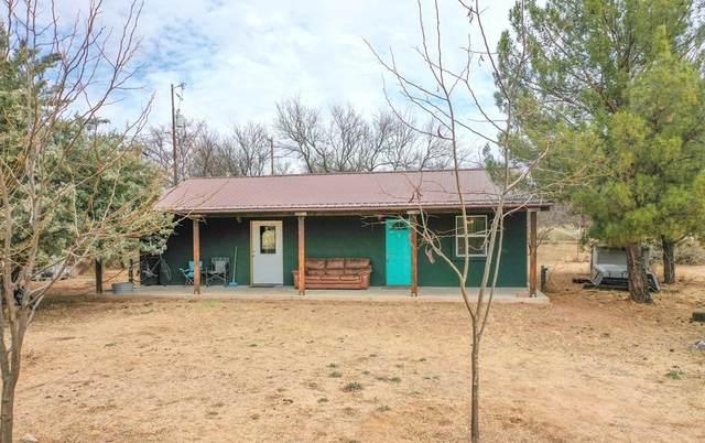 2624 S Horny Toad Trail, Saint David, AZ 85630 (MLS #6234756) :: Yost Realty Group at RE/MAX Casa Grande