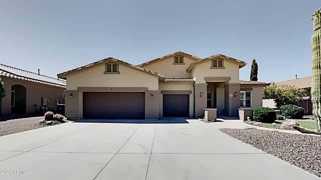 9789 W Buckhorn Trail, Peoria, AZ 85383 (MLS #6234782) :: Service First Realty