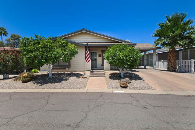 201 S Greenfield Road #204, Mesa, AZ 85206 (MLS #6234800) :: Service First Realty