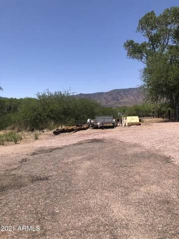 179 W Elm Street, Tonto Basin, AZ 85553 (MLS #6234807) :: Sheli Stoddart Team | M.A.Z. Realty Professionals