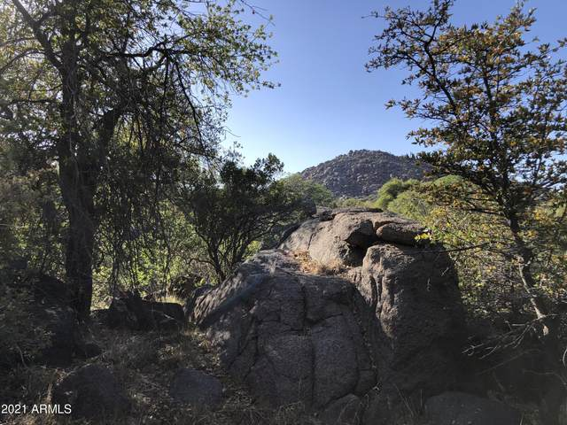 22400 S Cherry Lane, Yarnell, AZ 85362 (MLS #6234818) :: Keller Williams Realty Phoenix