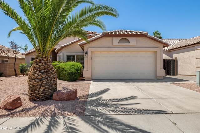 2551 E Taro Lane, Phoenix, AZ 85050 (MLS #6234846) :: The Riddle Group