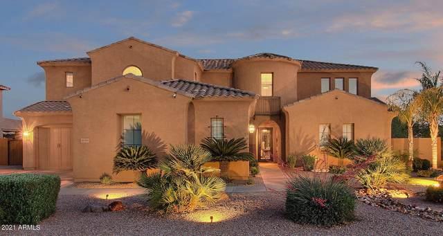 20309 E Poco Calle Street, Queen Creek, AZ 85142 (MLS #6234869) :: Yost Realty Group at RE/MAX Casa Grande