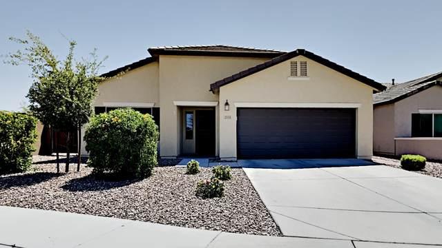 2333 N General Drive, Florence, AZ 85132 (MLS #6234885) :: Yost Realty Group at RE/MAX Casa Grande