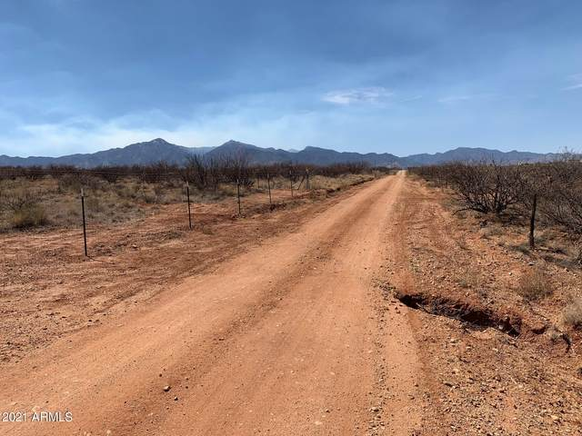 3332 N In-Balance Road, Whetstone, AZ 85616 (MLS #6234907) :: Yost Realty Group at RE/MAX Casa Grande