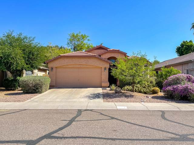 4350 E Gatewood Road, Phoenix, AZ 85050 (MLS #6234945) :: The Laughton Team