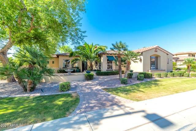 2943 E Warbler Road, Gilbert, AZ 85297 (MLS #6234994) :: Executive Realty Advisors