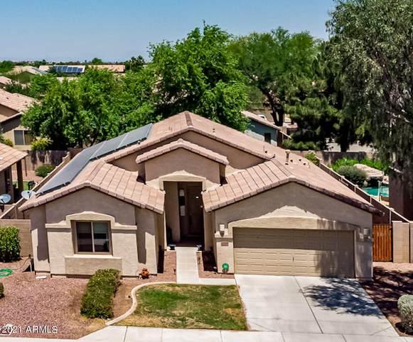 12536 W Glenrosa Drive, Litchfield Park, AZ 85340 (MLS #6235038) :: Synergy Real Estate Partners