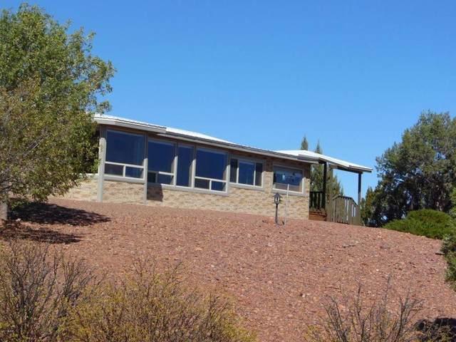 9812 Rockin R Ranch Road, Snowflake, AZ 85937 (MLS #6235091) :: Sheli Stoddart Team | M.A.Z. Realty Professionals