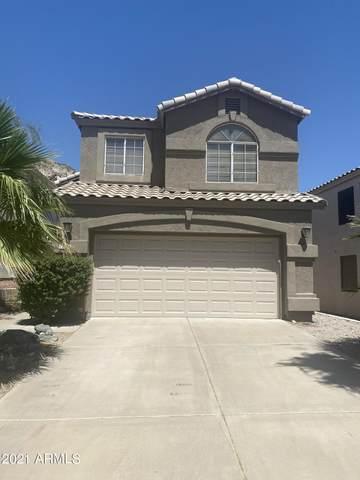 15209 S 14TH Place, Phoenix, AZ 85048 (#6235105) :: The Josh Berkley Team