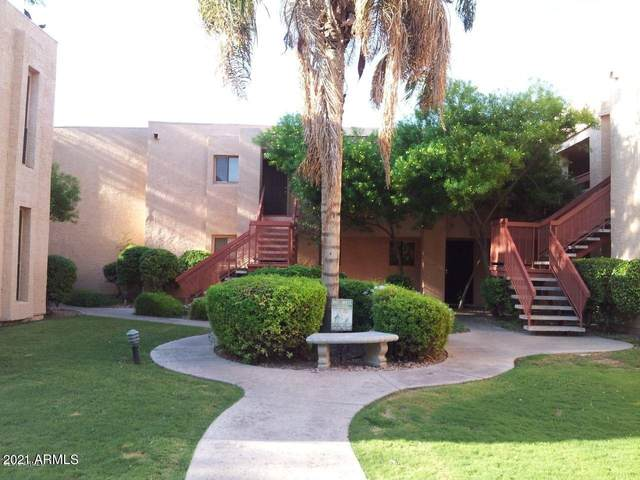 3131 W Cochise Drive #151, Phoenix, AZ 85051 (MLS #6235108) :: The Dobbins Team