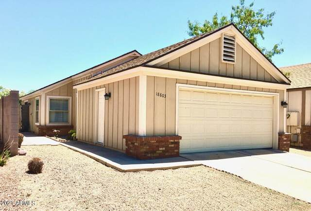 18803 N 33RD Drive, Phoenix, AZ 85027 (MLS #6235173) :: West Desert Group | HomeSmart