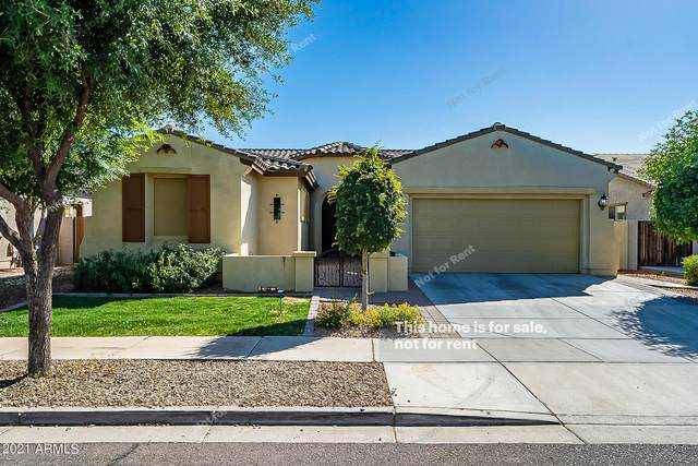 4577 E Waterman Street, Gilbert, AZ 85297 (MLS #6235190) :: Zolin Group