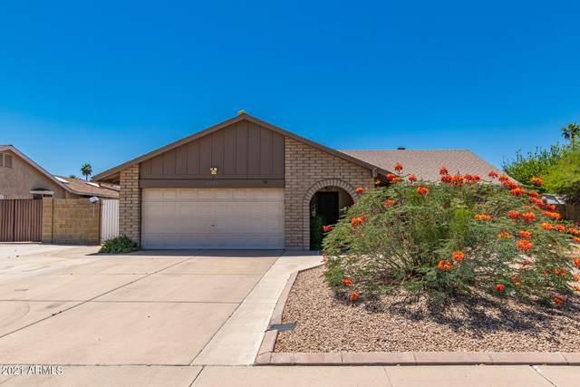 4337 E Evans Drive, Phoenix, AZ 85032 (MLS #6235191) :: Yost Realty Group at RE/MAX Casa Grande