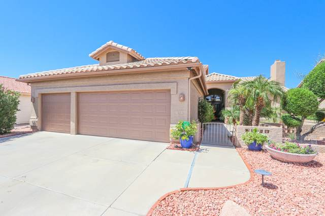 10210 E Coopers Hawk Drive, Sun Lakes, AZ 85248 (MLS #6235214) :: Midland Real Estate Alliance