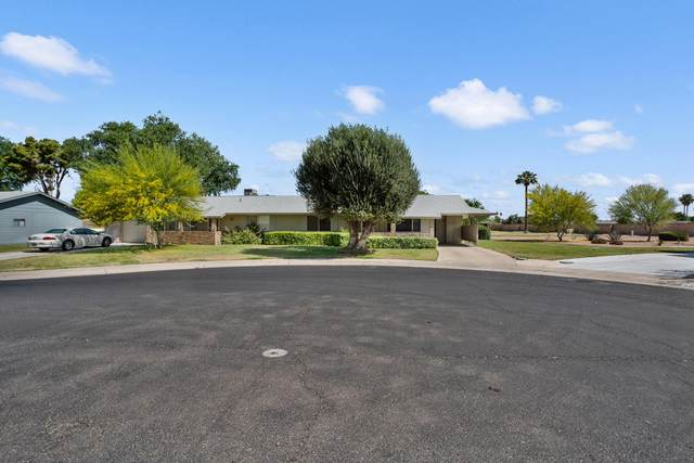 9902 W Spruce Drive, Sun City, AZ 85351 (MLS #6235216) :: TIBBS Realty