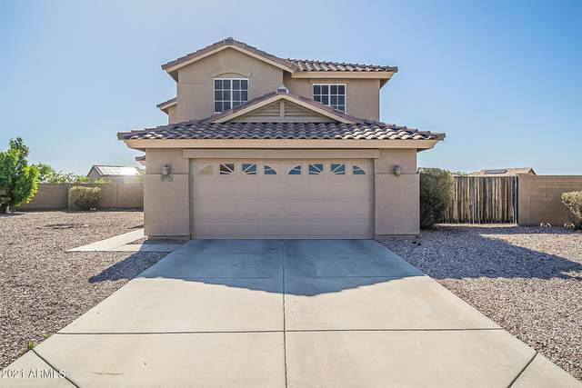 22319 W Antelope Trail, Buckeye, AZ 85326 (MLS #6235236) :: Yost Realty Group at RE/MAX Casa Grande