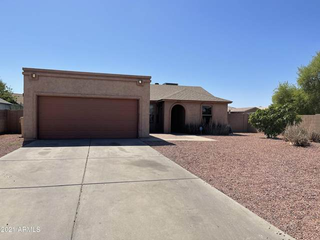 6738 N 79 Avenue, Glendale, AZ 85303 (MLS #6235306) :: Yost Realty Group at RE/MAX Casa Grande