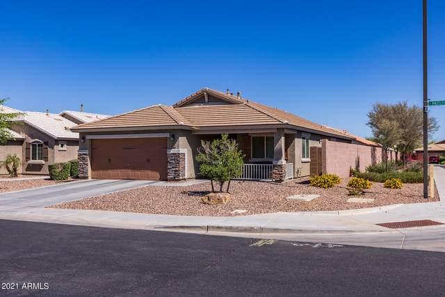 2258 E Hazeltine Way, Gilbert, AZ 85298 (MLS #6235311) :: Yost Realty Group at RE/MAX Casa Grande