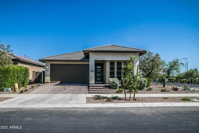 10029 E Ampere Avenue, Mesa, AZ 85212 (MLS #6235319) :: Balboa Realty