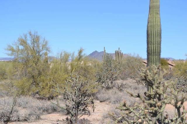 6715 E Peak View Road, Cave Creek, AZ 85331 (MLS #6235329) :: The Newman Team