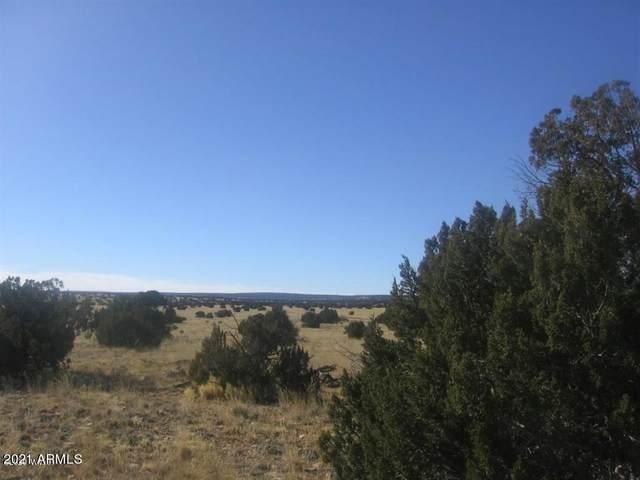 Sec 6 Chevelon Retreat, Heber, AZ 85928 (MLS #6235387) :: Yost Realty Group at RE/MAX Casa Grande