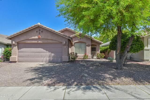 4426 E Rowel Road, Phoenix, AZ 85050 (MLS #6235398) :: The Garcia Group