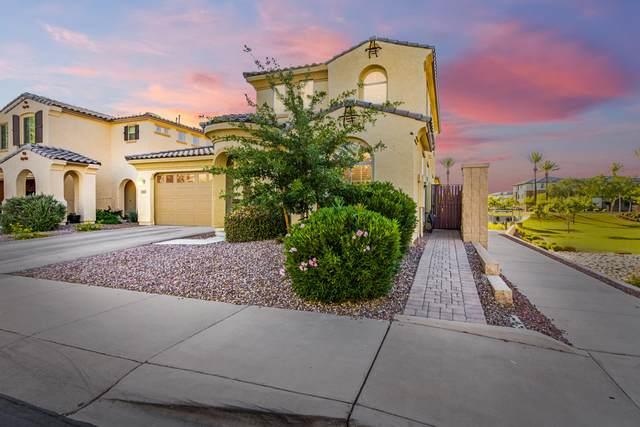 13182 N 91ST Drive, Peoria, AZ 85381 (MLS #6235400) :: neXGen Real Estate