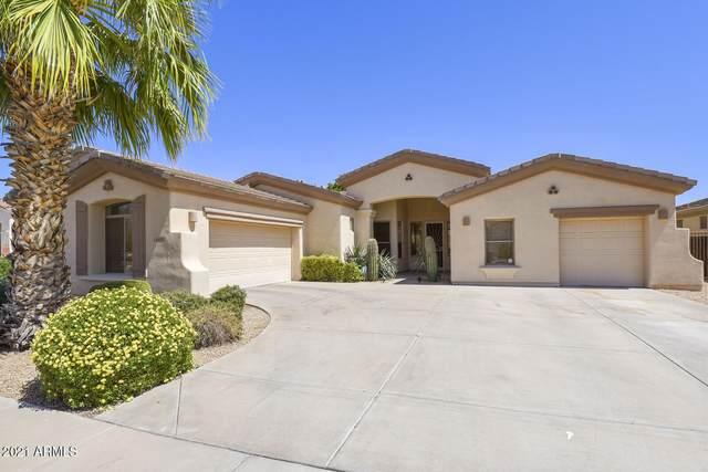 14459 W Merrell Street, Goodyear, AZ 85395 (MLS #6235423) :: The Dobbins Team