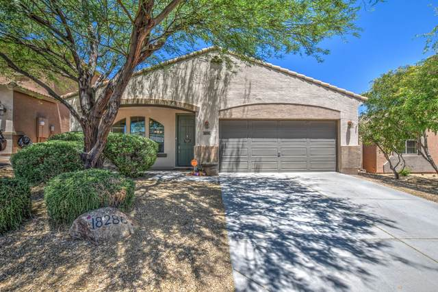 18286 E La Posada Court, Gold Canyon, AZ 85118 (MLS #6235425) :: Arizona Home Group