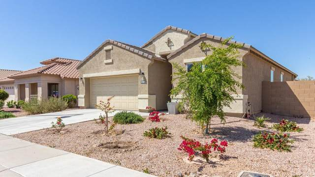 25304 W Park Avenue, Buckeye, AZ 85326 (MLS #6235481) :: Yost Realty Group at RE/MAX Casa Grande