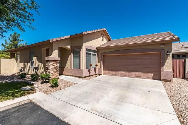 1260 S Amber Street, Chandler, AZ 85286 (MLS #6235538) :: Yost Realty Group at RE/MAX Casa Grande