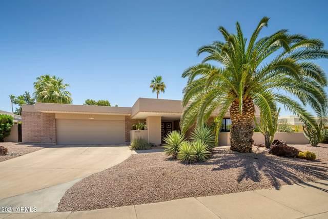 8117 E Del Tiburon Drive, Scottsdale, AZ 85258 (MLS #6235587) :: Klaus Team Real Estate Solutions