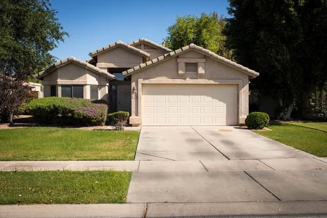 1352 W Blue Ridge Court, Chandler, AZ 85248 (MLS #6235594) :: Dave Fernandez Team | HomeSmart
