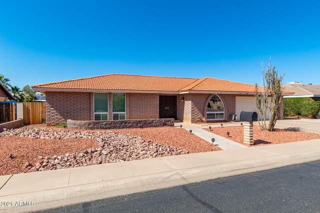440 W Ironwood Drive, Chandler, AZ 85225 (MLS #6235608) :: Yost Realty Group at RE/MAX Casa Grande