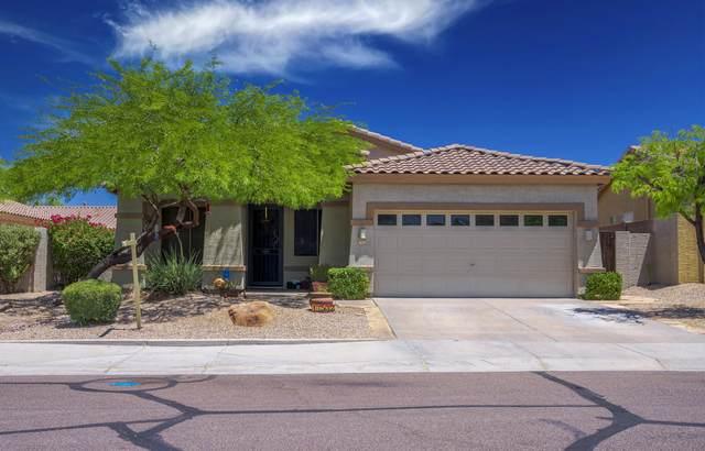 17532 W Canyon Lane, Goodyear, AZ 85338 (MLS #6235620) :: Yost Realty Group at RE/MAX Casa Grande