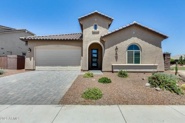 1332 W Alpine Tree Avenue, San Tan Valley, AZ 85140 (MLS #6235625) :: Arizona 1 Real Estate Team