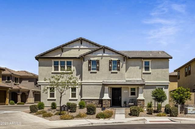 1541 N Banning, Mesa, AZ 85205 (MLS #6235660) :: Sheli Stoddart Team | M.A.Z. Realty Professionals