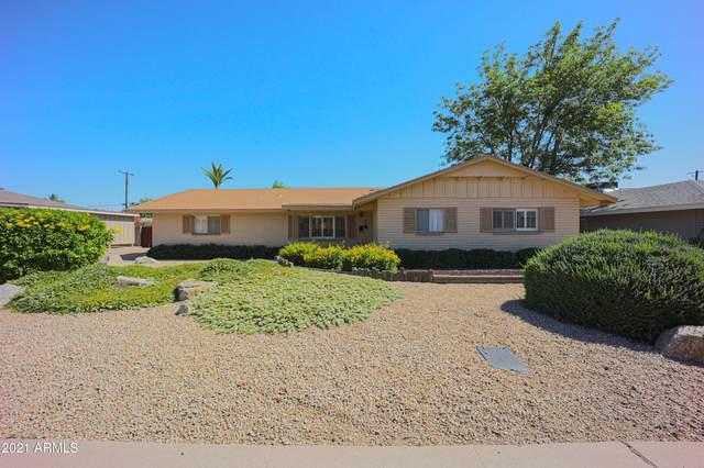 8219 E Rancho Vista Drive, Scottsdale, AZ 85251 (MLS #6235699) :: My Home Group