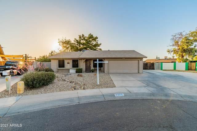9922 N 87TH Drive, Peoria, AZ 85345 (MLS #6235773) :: Yost Realty Group at RE/MAX Casa Grande