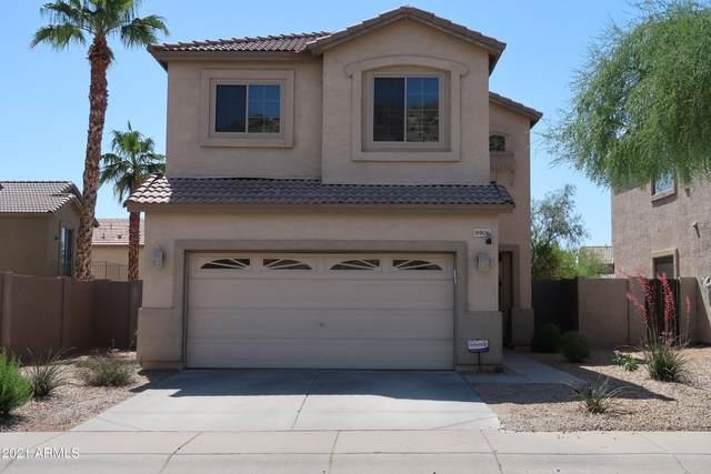 16806 S Magenta Road, Phoenix, AZ 85048 (MLS #6235791) :: Conway Real Estate