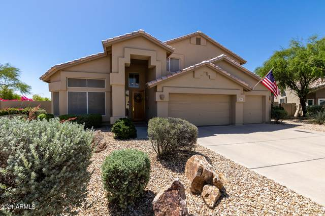 3147 E Muirwood Drive, Phoenix, AZ 85048 (MLS #6235807) :: Midland Real Estate Alliance
