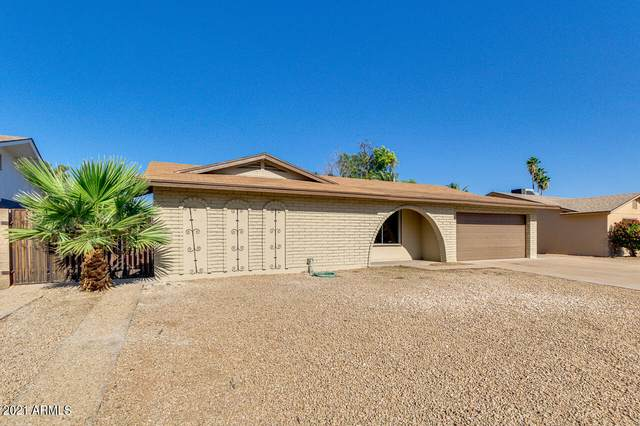11219 N 41ST Avenue, Phoenix, AZ 85029 (MLS #6235812) :: Hurtado Homes Group
