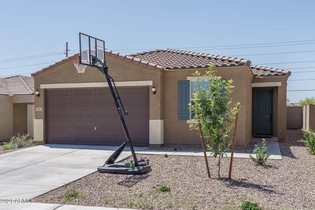 12651 W Glenn Drive, Glendale, AZ 85307 (MLS #6235814) :: neXGen Real Estate