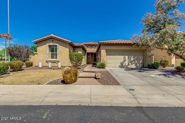 4027 S White Drive, Chandler, AZ 85249 (MLS #6235816) :: Arizona 1 Real Estate Team