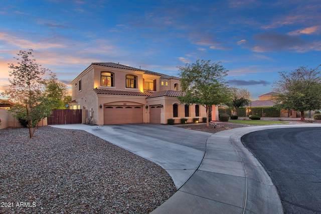 3516 S Halsted Court, Chandler, AZ 85286 (MLS #6235836) :: Arizona 1 Real Estate Team