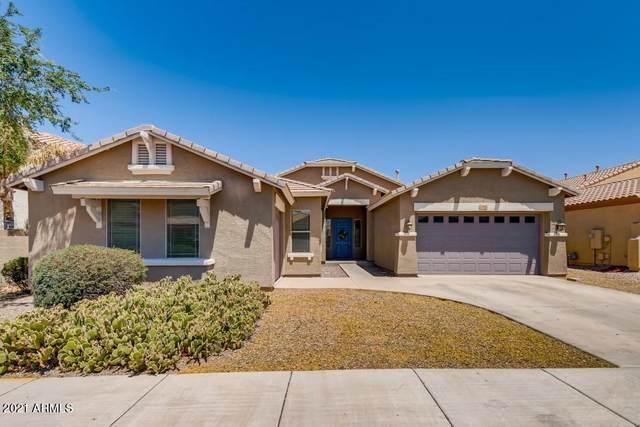 2466 E Redwood Court, Chandler, AZ 85286 (MLS #6235848) :: Arizona 1 Real Estate Team